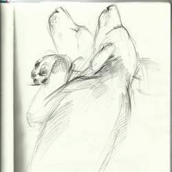 quick dog sketch by alexiacortez