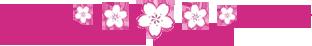 Divider Pink Sakura up by Bliood-Kira