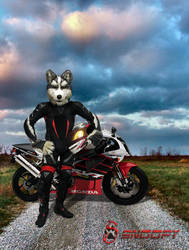 Furry Sport Biker
