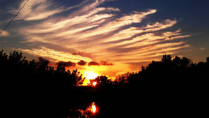Feathered Sunset