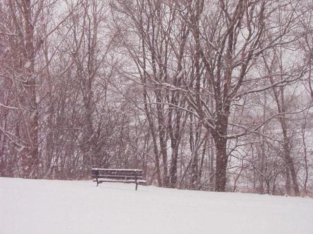 Lonely Bench by yazmin