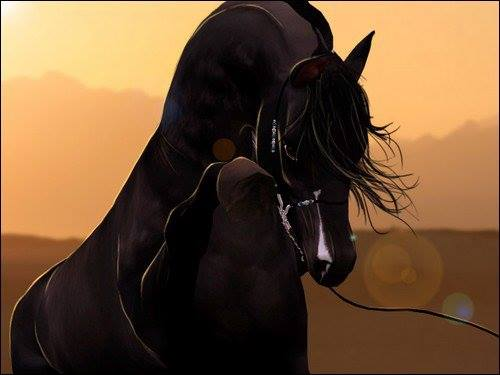 Black Stallion by 00Tao-Horses00