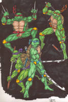Teenage Mutant Ninja Turtles by eoshek