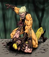 Wolverine vs Sabretooth in color by eoshek