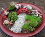 Fairy  Garden by KatherineReedKS