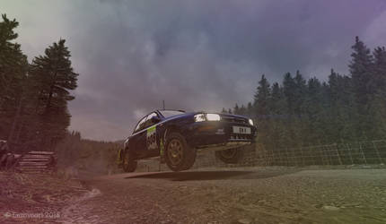 DiRT Rally - Wales 01 by enzovoort