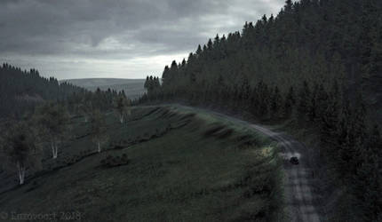 DiRT Rally - Wales 02 by enzovoort