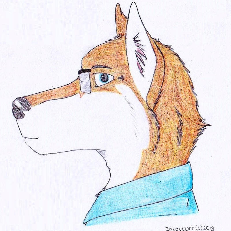 New icon by enzovoort