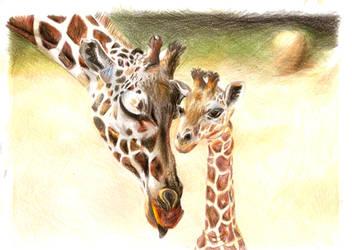 Giraffes by selene-kitty