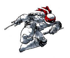 ninja? turtle! by mooncalfe