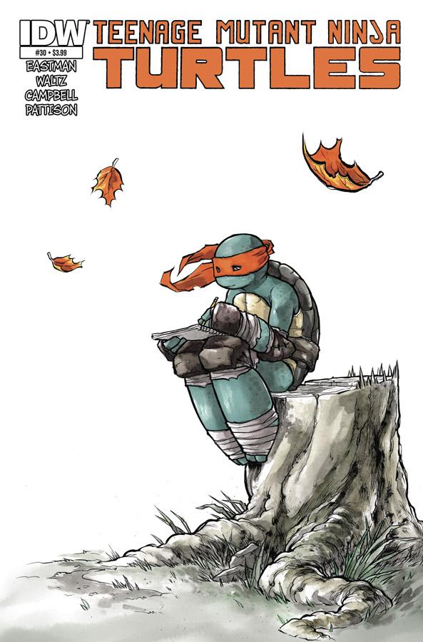 Teenage Mutant Ninja Turtles #30 by mooncalfe