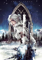 Novel cover The witcher vol.6 by Xiling