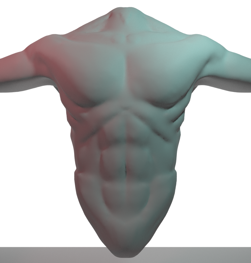 Male chest anatomy study (front) by benjohan on DeviantArt