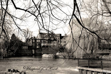 Cambridge 6 by WhispersOfAHeart