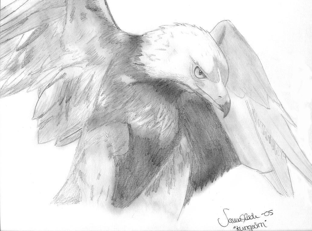 Royal Eagle by Izilja