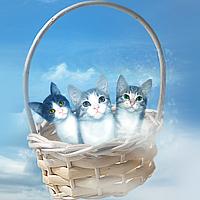Three Little Cats by DeadLulu