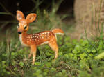 Poseable Fawn Sculpture - (SOLD)