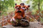 Fox Couple