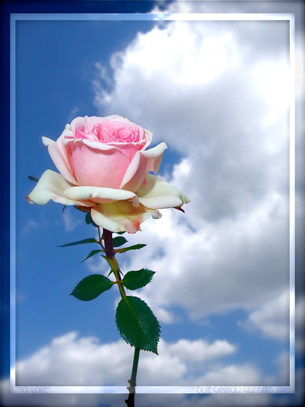 """Obrázok """"http://fc19.deviantart.com/fs42/i/2009/097/3/e/__To_Love___by_oliecannoligriffard.jpg"""" sa nedá zobraziť, pretože obsahuje chyby."""