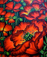 the magic of poppies by oliecannoligriffard