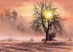 Free Winter Sunset Background