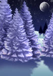 Free Winter Night Background