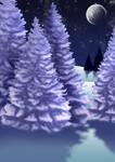 Free Winter Night Background