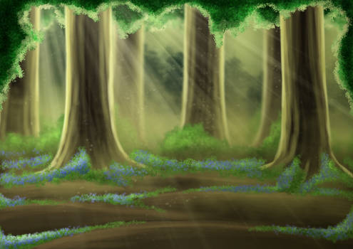 Free Bluebell Forest Background