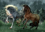 Rain And Revelations