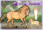 LFS Feanor