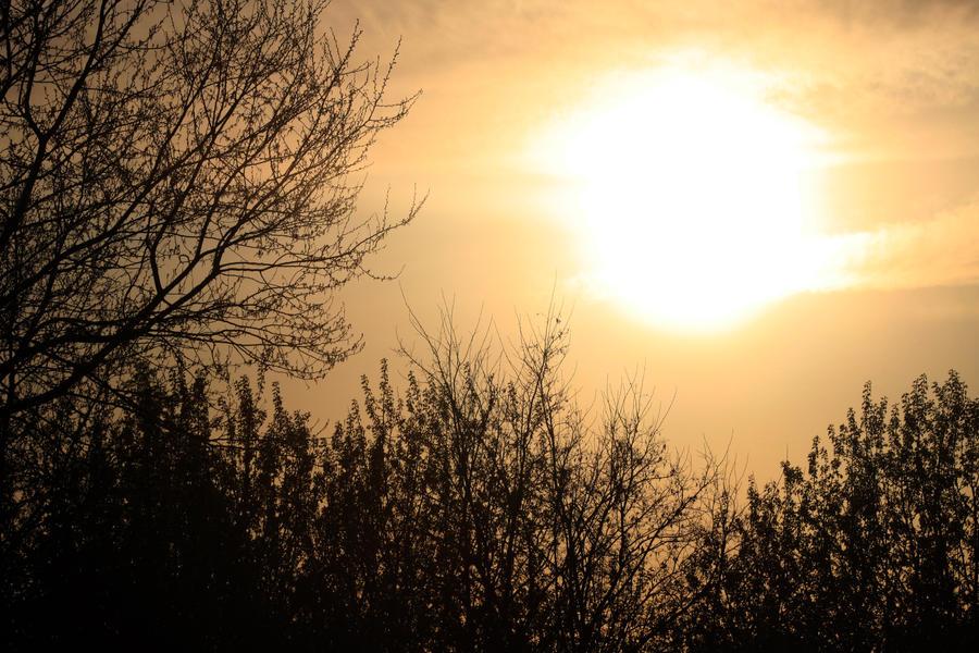 Sunshine by daPerforM