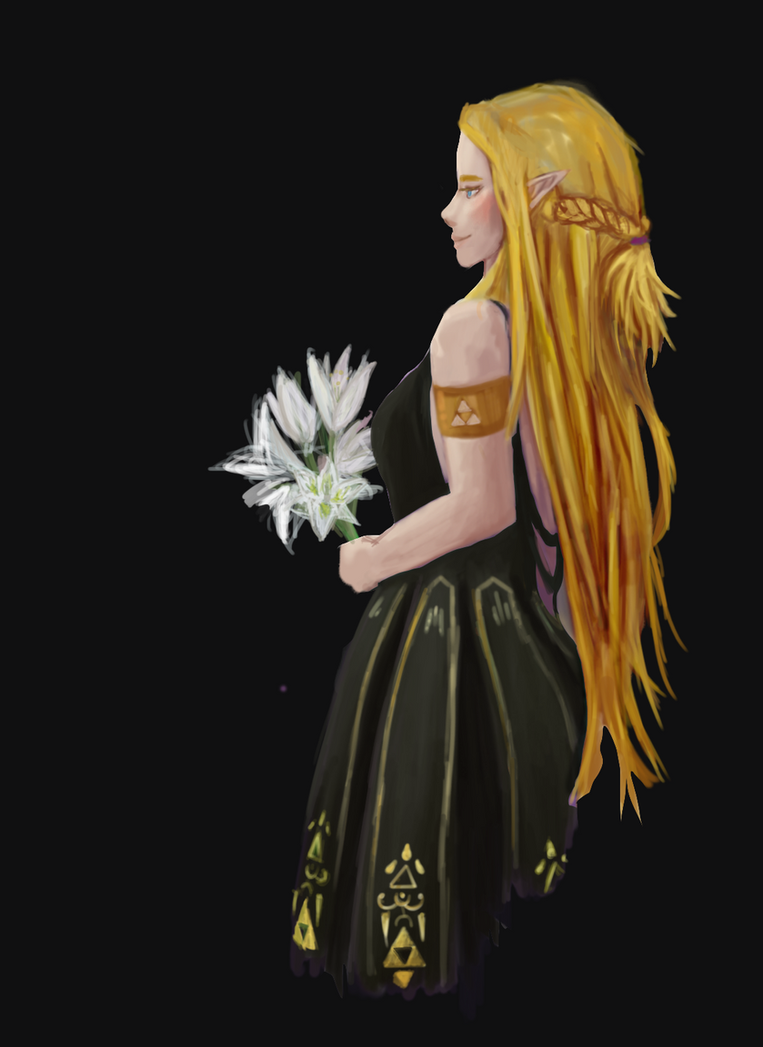 Zelda WIP by raychuhll