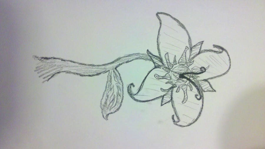 Watch More Like Flower Designs From Tangled 900x506 Jpeg