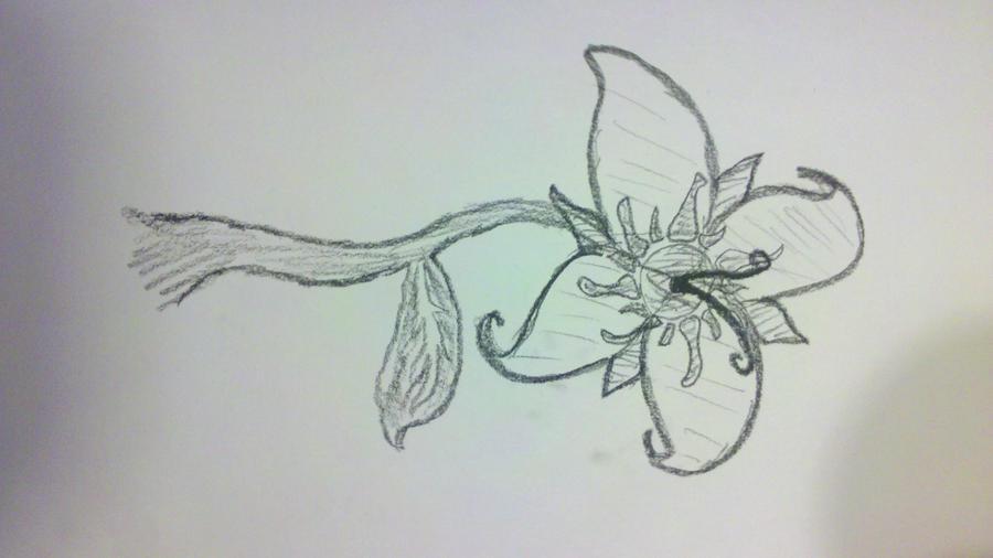 Traditional Flower Line Drawing : Tangled flower by spiritinabottle on deviantart