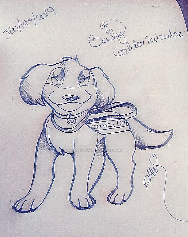 Service Dog Bailey By Asheymashwolf On Deviantart