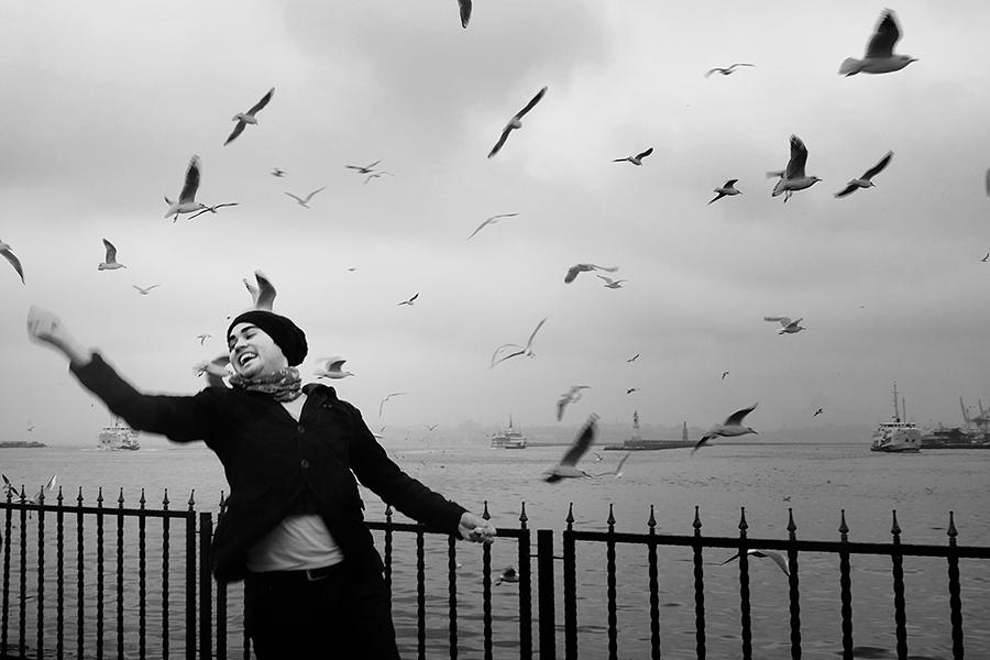 birdy by arslanalp