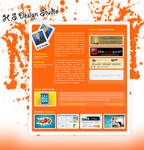 Web Interfaces, Web Designs