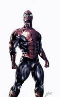 Spiderman by vnagy152