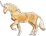 T455 Stocco | Boucle Stallion | Bataille