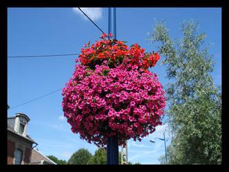Flowers by BluePalmTree