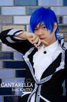 Vocaloid: La Cantarella by K1ngd0mHe4rtsZ