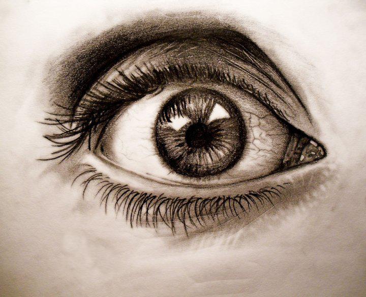 Gallery For gt Eye Sketch