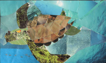 Sea Turtle by itslalalalauryn