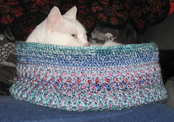 Moroccan-Kitty-Bed by CarpeDraco
