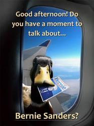 Ducks For Bernie!