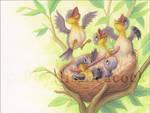Goldfinch Babies
