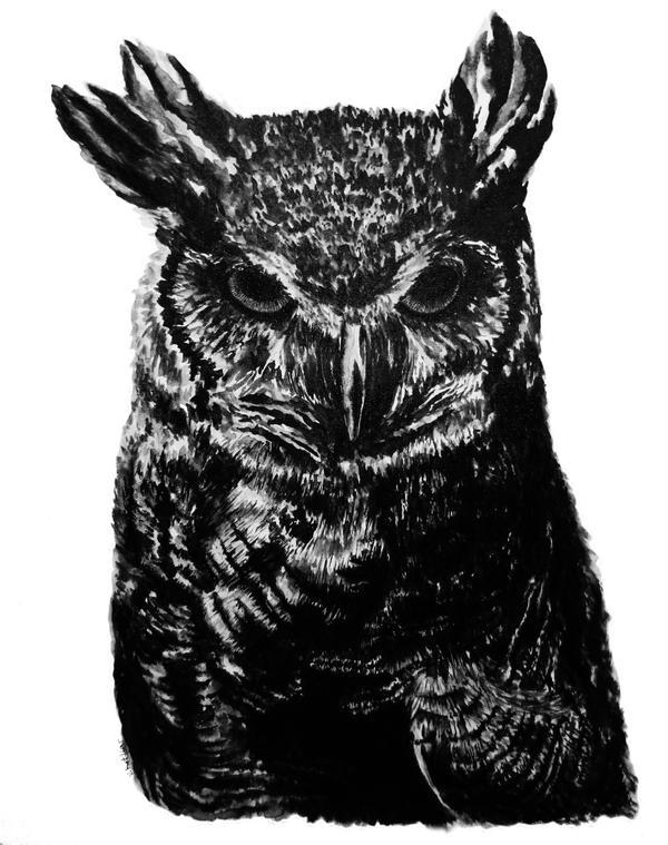 owl. ink practice. by imsoqueer