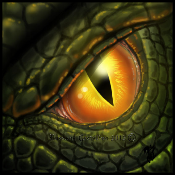 Dragon Eye by RossanaCastellino