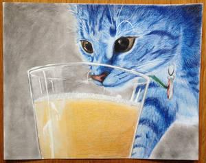 Pippi the cat, coloured pencil
