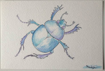 Dung beetle watercolour by PokeponyAquaBubbles